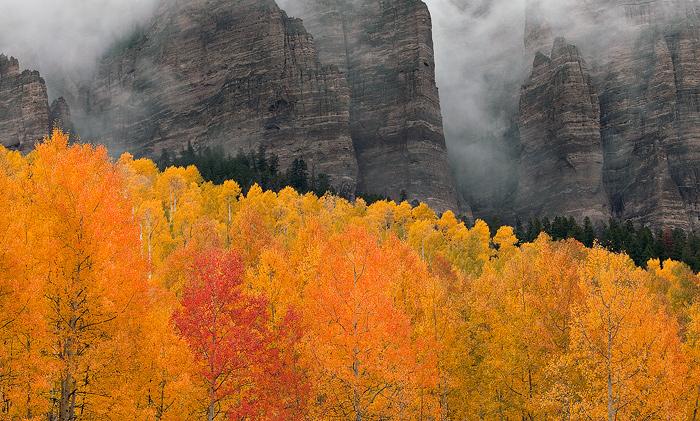 owl creek, colorado, ouray, aspen, leaves, colors