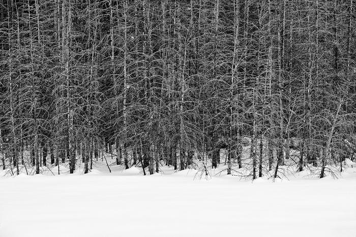teton, winter, wyoming